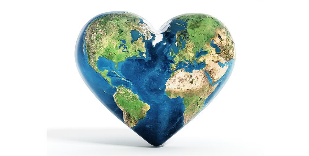 La sostenibilidad: El propósito corporativo de una organización saludable